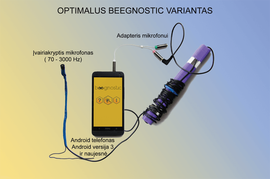 Optimalus Beegnostic variantas